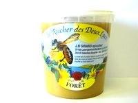 Miel de Forêt ( 1 kg )